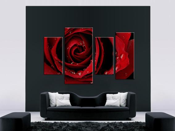 Бутон красной розы 1