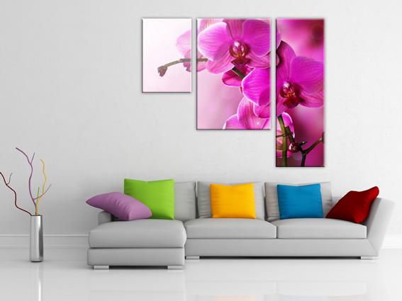 Ярко-розовая орхидея