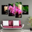 Орхидея фуксия