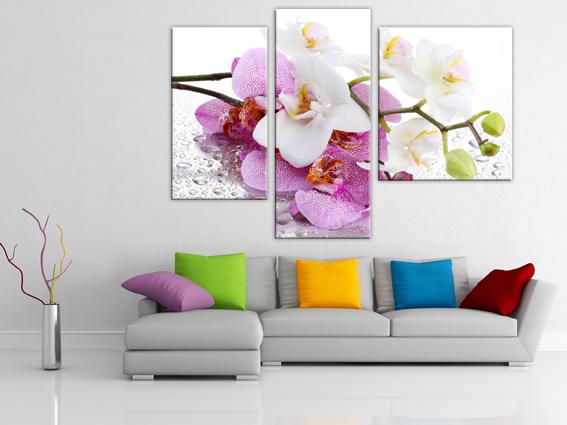 Сиреневая орхидея
