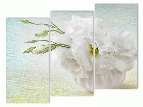 Белоснежный цветок