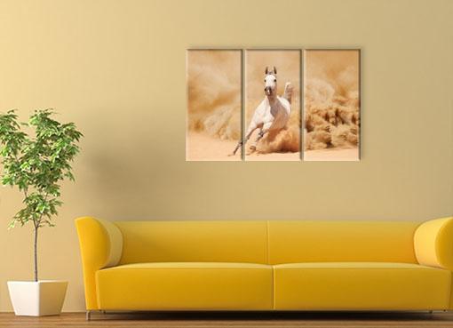 Белый конь в пыли2