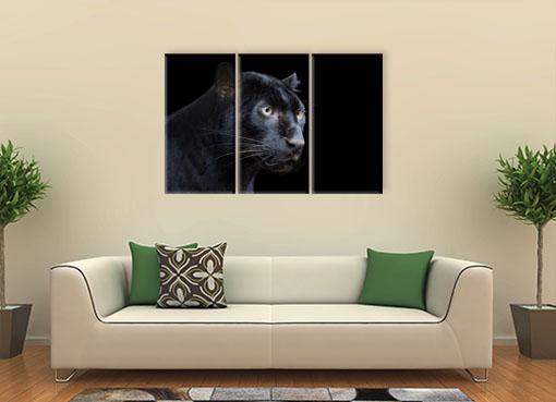 Черная пантера3