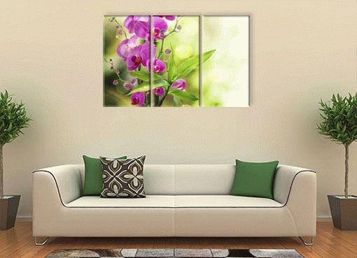 Изящная орхидея3