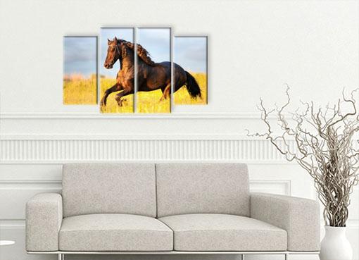 Лошадь в поле2