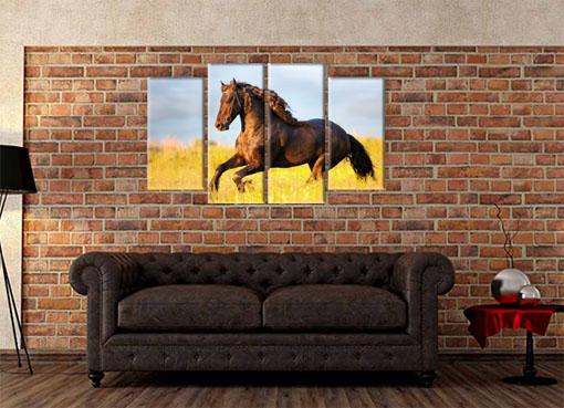 Лошадь в поле3