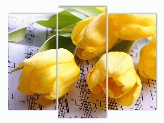 Музыка и цветы