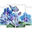 Орхидея и бабочки