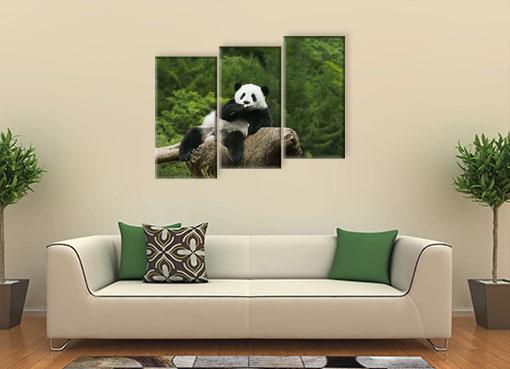 Панда на дереве2