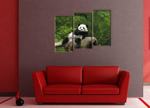 Панда на дереве3