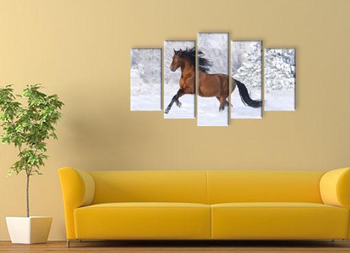 Резвый конь2
