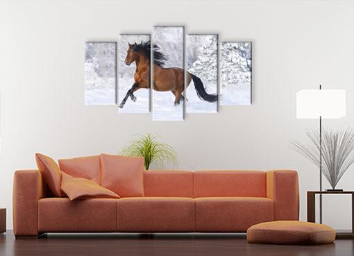 Резвый конь3