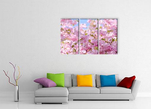 Розовая весна2