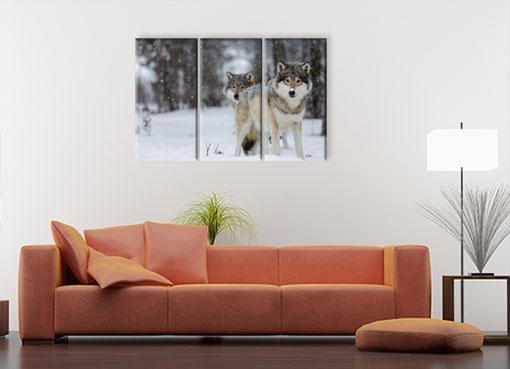 Волки в снежном лесу3