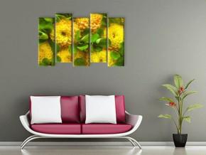 Жёлтые цветы..