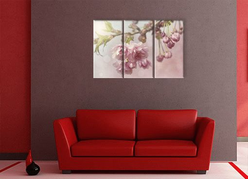 любимые цветы2
