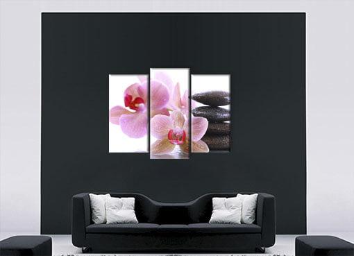 орхидеи у камня2