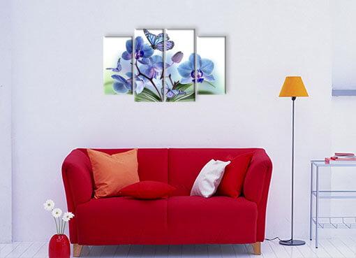 орхидея ибабочки 2
