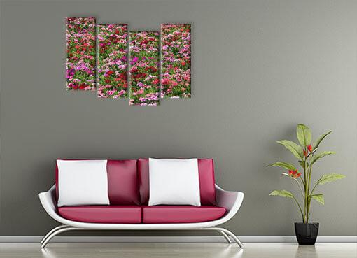 пестрые цветы 2