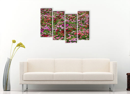 пестрые цветы3