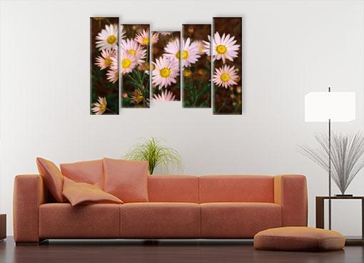 розовые хризантемы.