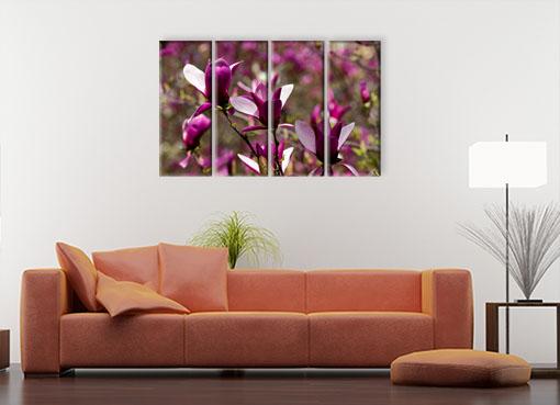 сочные цветы2