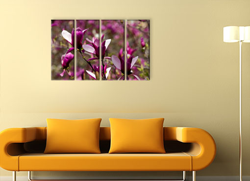 сочные цветы3