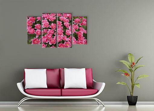 цветочный каприз2