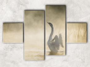 лебедь в тумане
