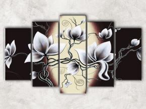 белые цветы с фоном