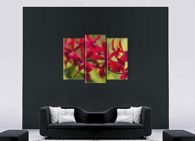 красный цветок2