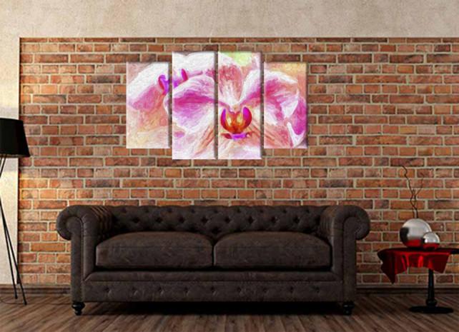 красота розовых орхидей