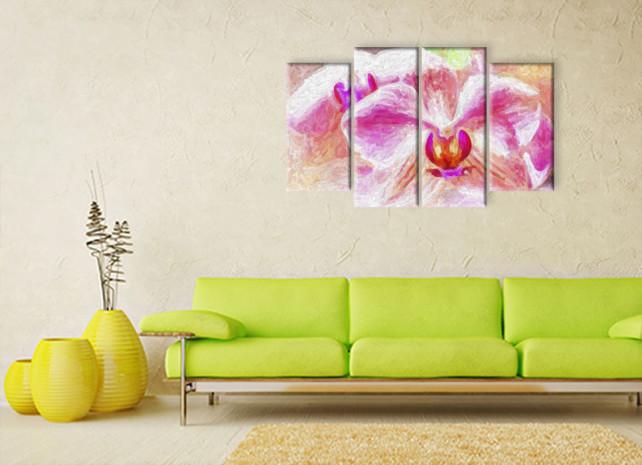 красота розовых орхидей2