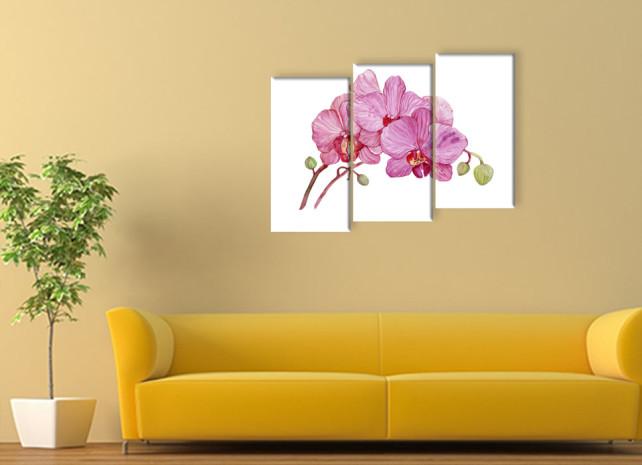 нарисованные орхидеи2