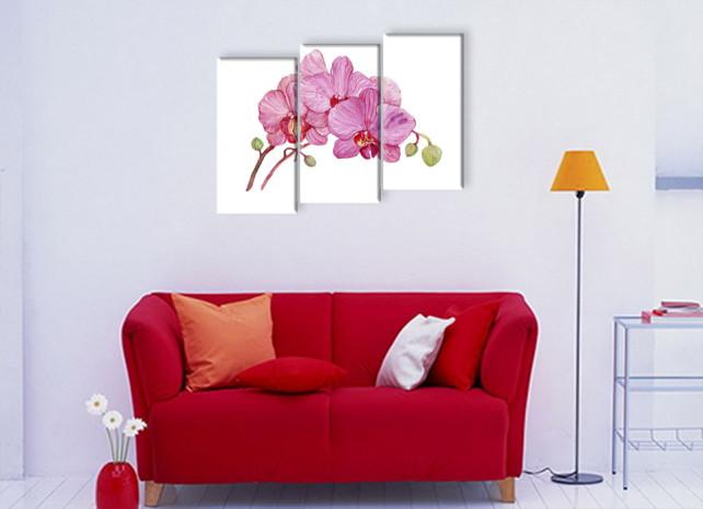 нарисованные орхидеи3