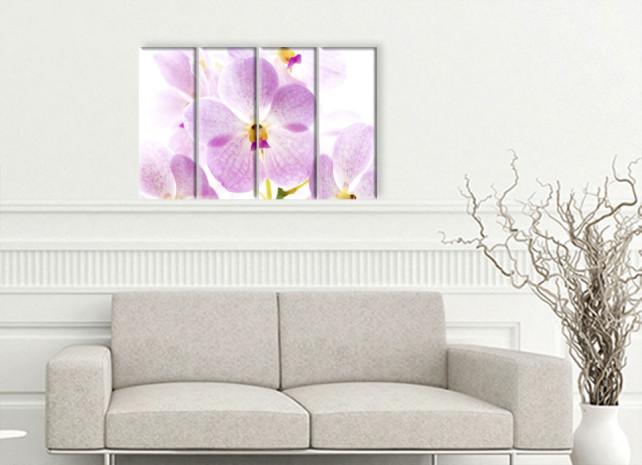 нежная орхидея2