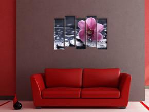 одинокая орхидея