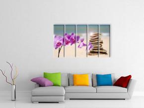 орхидеи на пляже