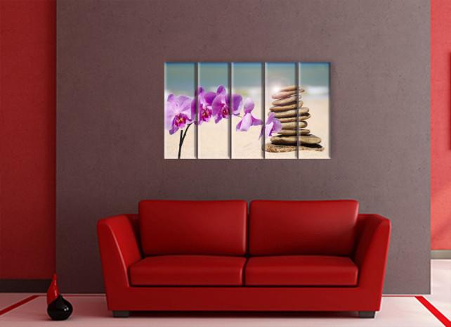 орхидеи на пляже2