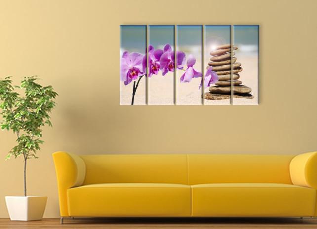орхидеи на пляже3