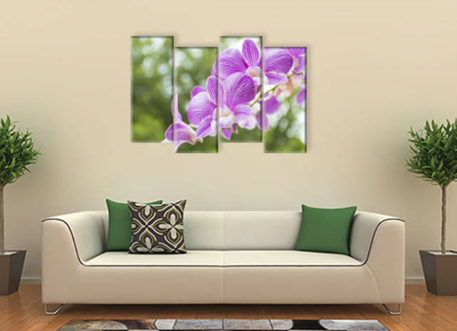 орхидеи назеленом фоне