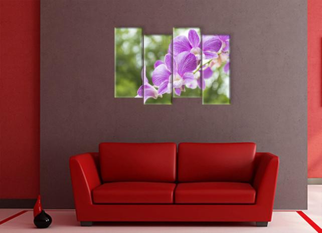 орхидеи назеленом фоне2