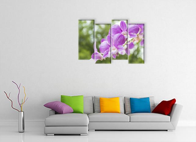 орхидеи назеленом фоне3