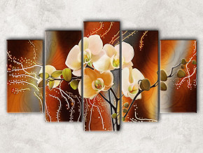 орхидеи с фоном
