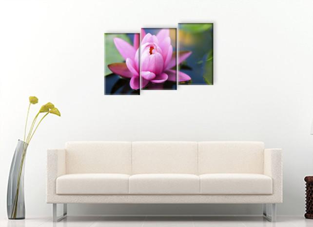 розовая лилия3