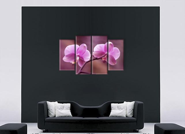 розовые лепестки3