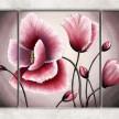розовые маки с фоном