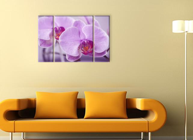 сиреневые цветы3