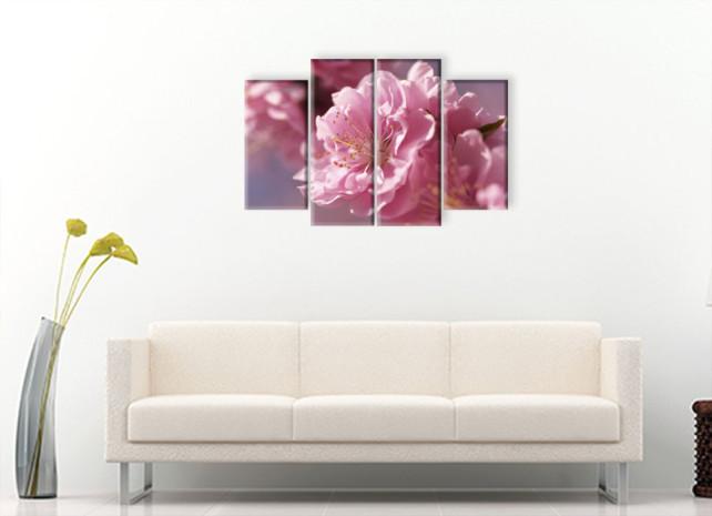 цветок сакуры2