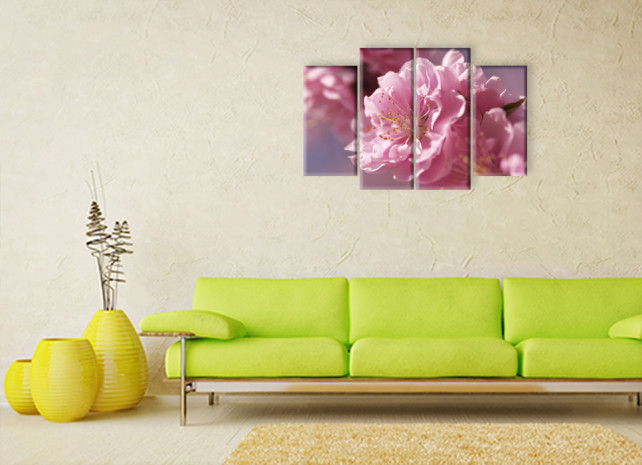 цветок сакуры3